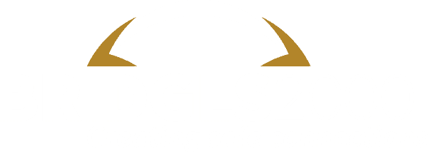 BRIDGES2000 footer logo