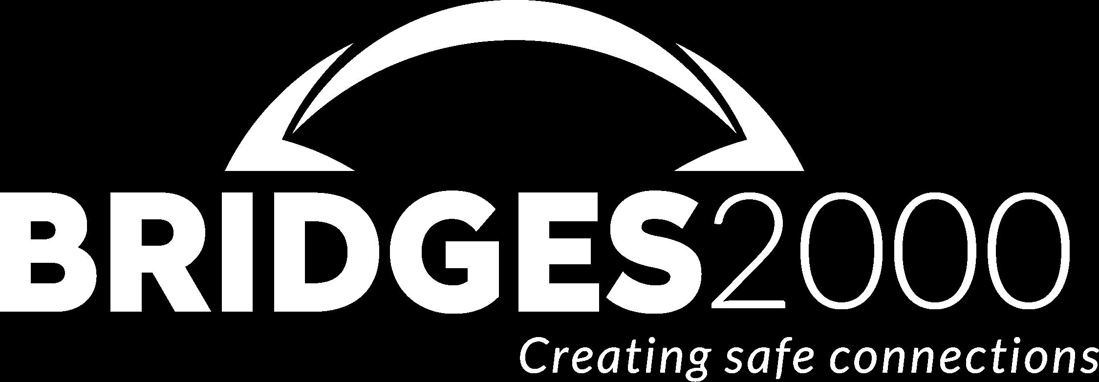 BRIDGES2000 logo wit